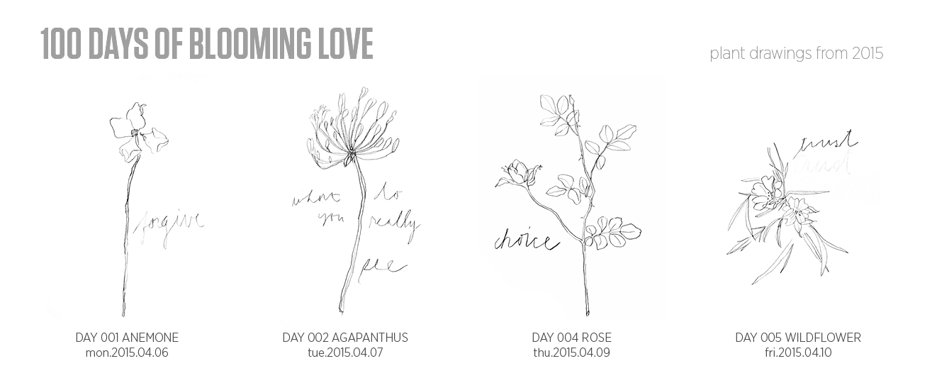 100 Days of Blooming Love (2015)