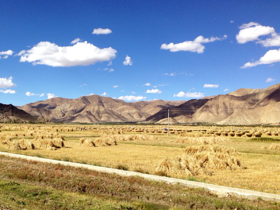 Tibet Countryside - Haystacks
